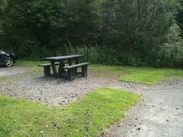 Dogging park